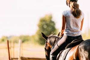 Horse Riding Tour In Azerbaijan Packages